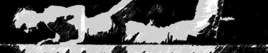 Image trainings black